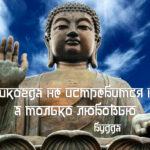 цитаты великих, будда, будда цитаты, цитаты про любовь, цитаты о любви